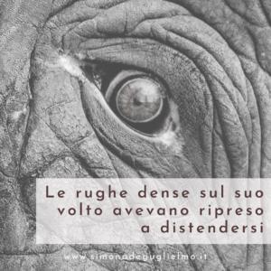 In primo piano l'occhio di un elefante circondato da rughe profonde.